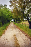Countryside Trail Royalty Free Stock Images