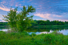 Countryside trees river blue sky dawn clouds Royalty Free Stock Photo