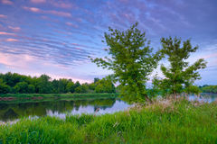 Countryside trees river blue sky dawn Royalty Free Stock Photo