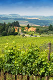 Countryside of Tuscany, Italy Royalty Free Stock Image