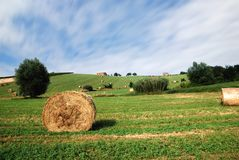 Countryside under blue sky Royalty Free Stock Photography