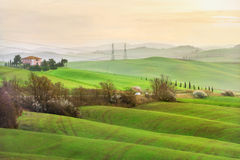 Countryside in Val d'Orcia province on sunrise. Tuscany, Italy Royalty Free Stock Photo