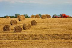 Countryside view of cultivated fields, Poland , Europe Royalty Free Stock Image