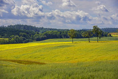 Countryside view of cultivated fields Royalty Free Stock Photography