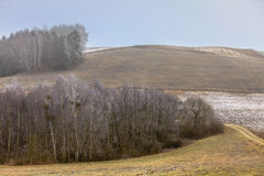 Countryside view frosty hilly fields with trees Royalty Free Stock Photos