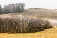 Countryside view frosty hilly fields with trees Stock Images