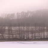 Countryside view frosty hilly fields with trees Royalty Free Stock Photo
