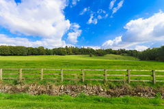 Countryside view of green field. Nature landscape Stock Photo