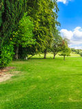 Countryside view of green field. Nature landscape Stock Photography