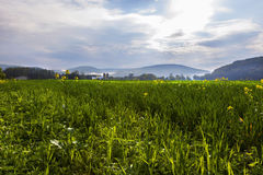 Countryside View Stock Photography