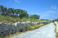 Maltese countryside. View with fragment of an old road and remains of Victoria Lines - vicinity of Mosta, Malta Stock Images