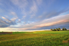 Countryside view of the meadows and cultivated fields Stock Images