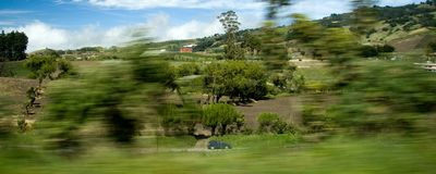 Countryside view from moving car Royalty Free Stock Image