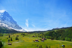 Countryside view near Alps mountains in summer Royalty Free Stock Photos