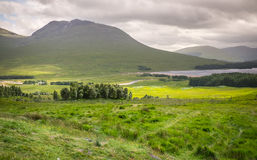 Countryside view at Scotland Royalty Free Stock Photo