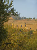 Countryside villa. Surrounded by olive plantations, Italy Royalty Free Stock Photo