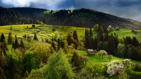 Countryside village in Romania in spring time , Bucovina county. With old houses and blooming trees on a sunny spring day stock image
