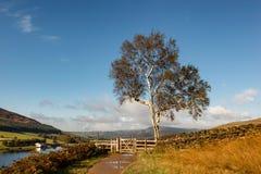 Countryside walk England Stock Photo