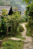 Countryside walk way in tropical forest Royalty Free Stock Photography