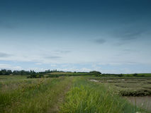 Countryside walking path outside through meadow. Essex; UK Royalty Free Stock Photography