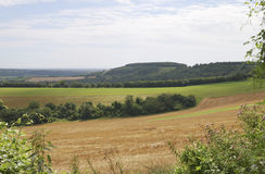 Countryside in West Sussex. England Stock Photos