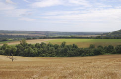 Countryside in West Sussex. England Royalty Free Stock Photography