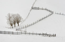 Countryside in winter time Stock Images