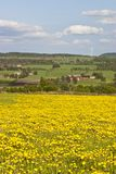 Countrysidel landscapes Royalty Free Stock Photo