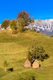 Countrysite en Roumanie Image libre de droits