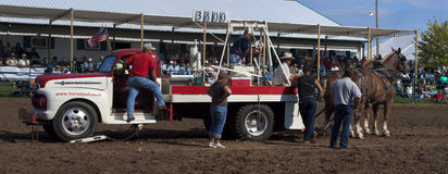 County Fair Farmer Horse Pull Competition Royalty Free Stock Image
