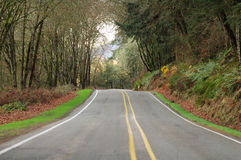 County Road Royalty Free Stock Photography