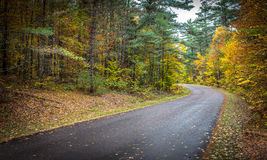 County road in late October color. Royalty Free Stock Photo