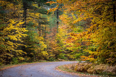 County roads in late October color. Stock Photos