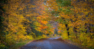 County roads in late October color. Stock Images