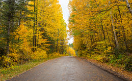 County roads in late October color. Royalty Free Stock Photo