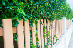 County style long wooden fence Stock Photography