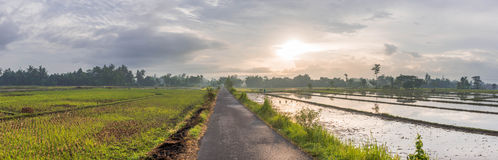 Countyside Bantul Yogyakarta Royalty Free Stock Photo