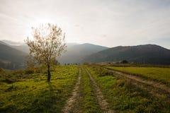Countyside droga w Karpackich górach zdjęcia stock