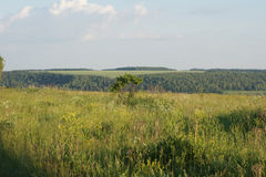 Countyside krajobraz Fotografia Stock
