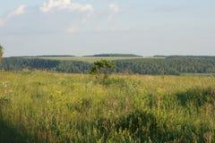 Countyside landskap Arkivbild