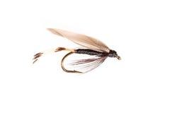 Coupé d'une mouche artificielle de truite d'insecte Photos libres de droits