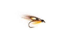 Coupé d'une mouche de pêche artificielle Images stock