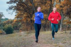 Coupé de course rapide de trotteur le long du chemin sur l'autumna coloré Photo stock