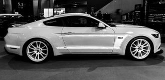 Coupé del Fastback di Ford Mustang GT AM2 dell'automobile di cavallino, 2016 Immagine Stock