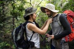 Coupé-Trekking in einem Wald stockfoto