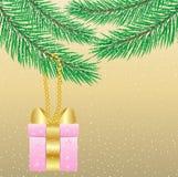 Coup de cadeau sur le sapin de branche illustration stock