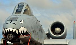 A-10 coup de foudre II/Warthog Photo stock