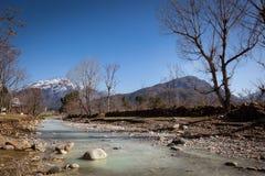 Coup de paysage Image stock
