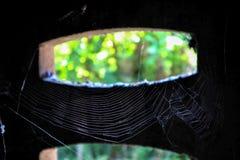 coup de toile d'araignée sur l'air en vieille nature de tache floue de pièce d'abandon extérieure Images libres de droits