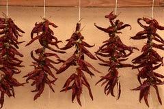 Coup rouge de piments à sécher au soleil photos libres de droits